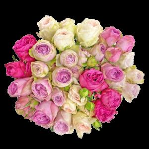 Qualirosa_bouquet_deluxe_special_garden